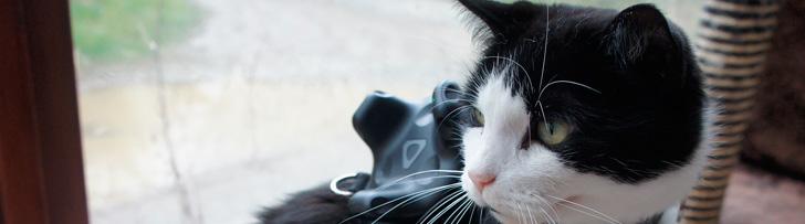 ¡Cuidado con las mascotas mientras utilizas la Realidad Virtual !